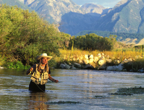 Engaging the public in identifying strategies for conserving Montana's rivers