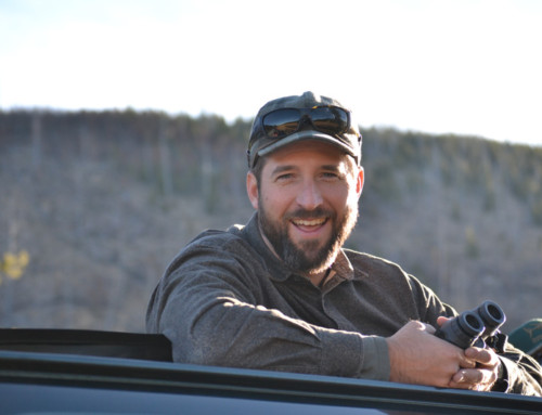 Chris Colligan, Wildlife Program Coordinator, Greater Yellowstone Coalition